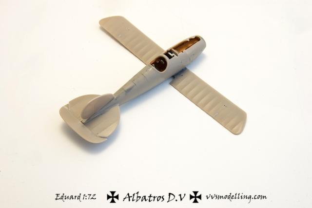 AlbatrosDV-10