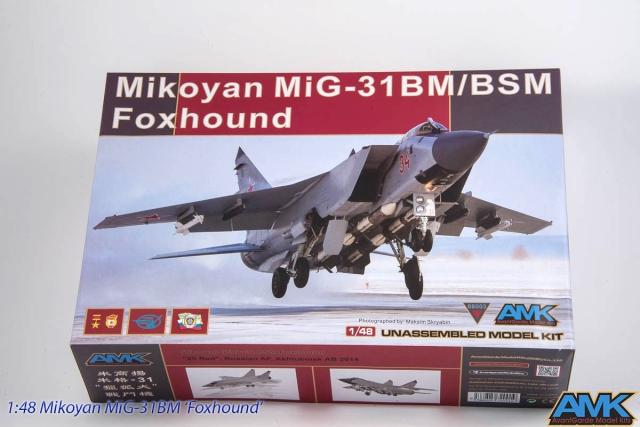 MiG31-1