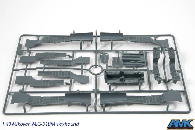 MiG31-10