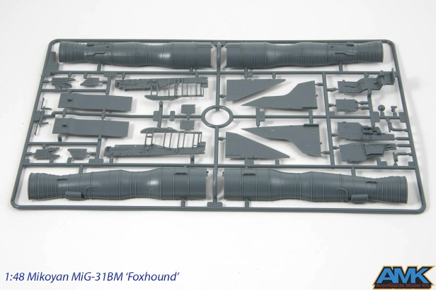 MiG31-11