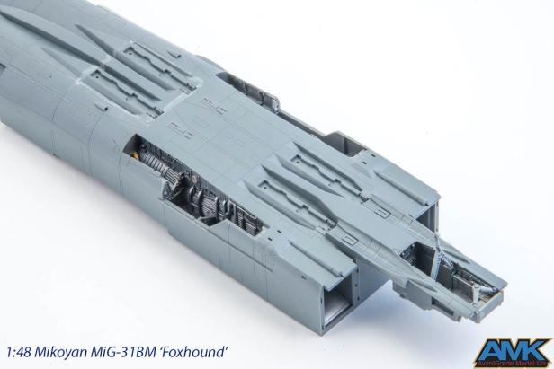 MiG31-56