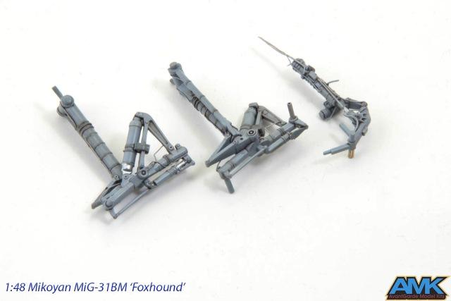 MiG31-100