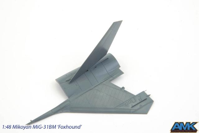 MiG31-61