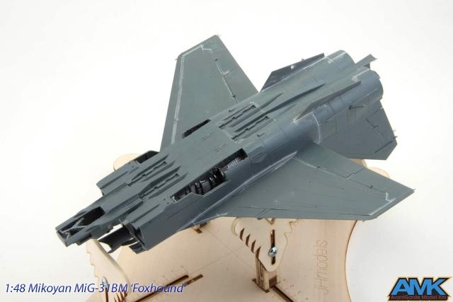 MiG31-65