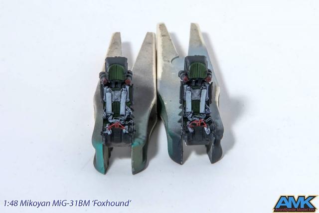 MiG31-71.jpg