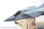 MiG31-118